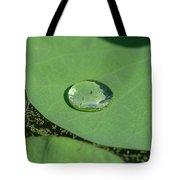 Drops On Lotus Leaf Tote Bag