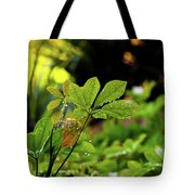 Drops On Plants After Morning Rain Tote Bag