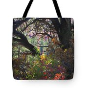Drought Fall Tote Bag