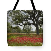 Drummonds Phlox Meadow Near Leming Texas Tote Bag by Tim Fitzharris