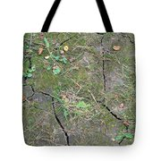 Dry And Thirsty Land Tote Bag