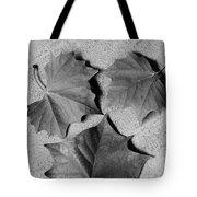 Dry Beauty Tote Bag