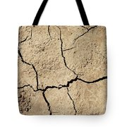 Dry Cracked Earth And Green Leaf Tote Bag