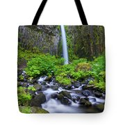 Dry Creek Falls Tote Bag