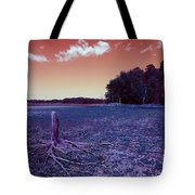 Dry Lake Infrared Tote Bag