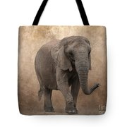 Dry Lands Tote Bag
