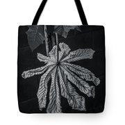 Dry Leaf Collection Bnw 2 Tote Bag
