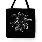 Dry Leaf Collection Bnw 3 Tote Bag