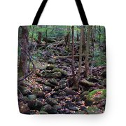 Dry River Bed- Autumn Tote Bag
