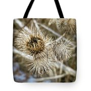 Dry Thistle Buds Tote Bag