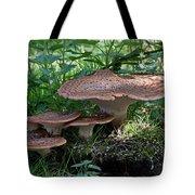 Dryad's Saddle Fungus Tote Bag