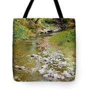 Drying Up River 3 Tote Bag