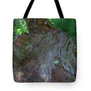 Dsc_0033 Web Tote Bag