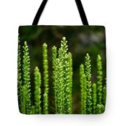 On The Grass Tote Bag