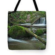 Dual Falls Tote Bag