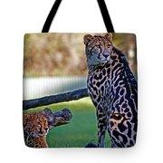 Dubbo Zoo Queen - King Cheetah And Cub Tote Bag