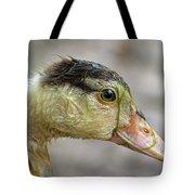 Duck 11 Tote Bag