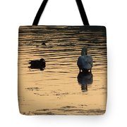 Duck And Swan At Sunrise Tote Bag