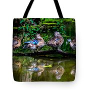 Duck Duck Duck Duck Tote Bag