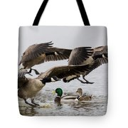 Duck Ducks Tote Bag