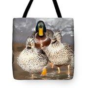 Duck - Id 16235-220255-9105 Tote Bag