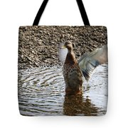 Duck In A Flap Tote Bag