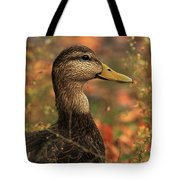 Duck In Autumn Tote Bag