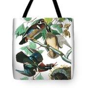 Lummer Or Wood Duck Tote Bag