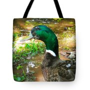 Duck On The Lake 1 Tote Bag