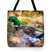 Duck On The Lake 2 Tote Bag