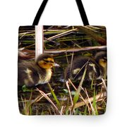 Ducklings 2 Tote Bag