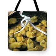 Ducklings In A Basket Tote Bag