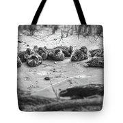 Ducklings Siblings - Grayscale Tote Bag