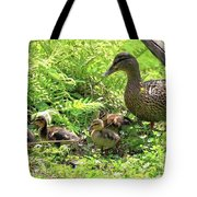 Ducklings Through The Ferns Tote Bag