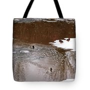 Ducks 2 Tote Bag