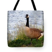Ducks And Geese 2 Tote Bag