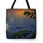 Ducks At Daybreak  Tote Bag