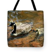 Duck Family Tote Bag