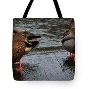 Ducks Hoping For Snacks  Tote Bag