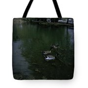 Ducks In A Pond Tote Bag
