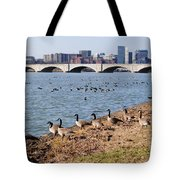Ducks Of The Potomac Tote Bag