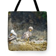 Ducks On A Rock Tote Bag