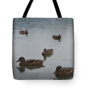 Ducks On Lake Bled Tote Bag