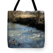 Ducks On The River In Early Spring Tote Bag