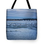 Ducks Taking Off Tote Bag