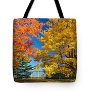 Dueling Maples Tote Bag