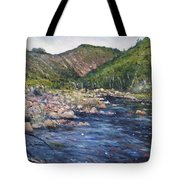Duivenhoks Dam Heidelberg South Africa 2016 Tote Bag