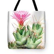 Dumpling Cactus Tote Bag