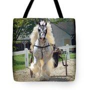 Dunbrody Drive Tote Bag
