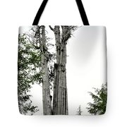 Duncan Memorial Big Cedar Tree - Olympic National Park Wa Tote Bag